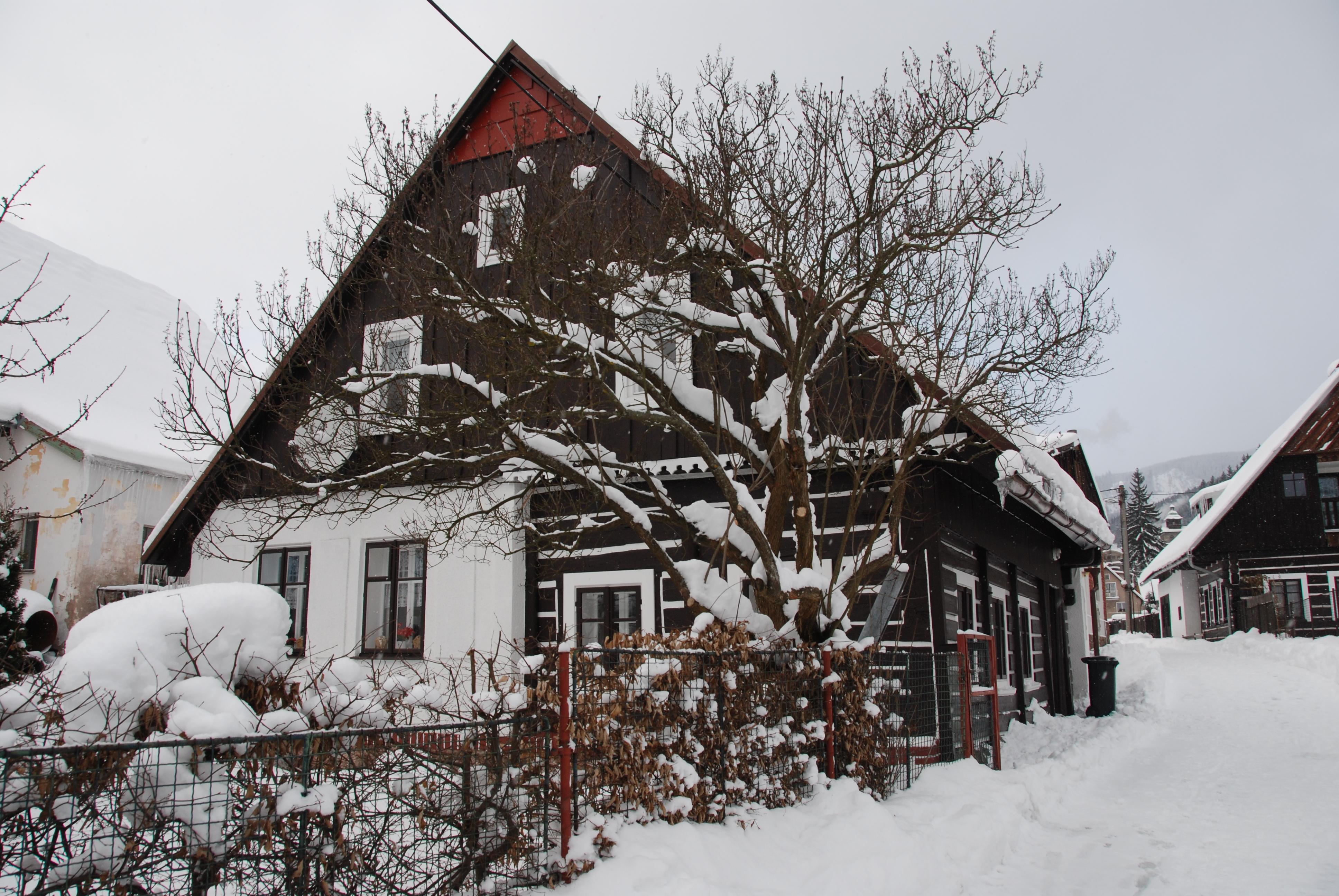99 Winter 1